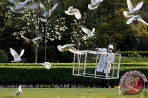 Seorang petugas taman umum membawa kandang untuk menangkap merpati di sebuah taman di Lapangan Rakyat, pusat kota Shanghai