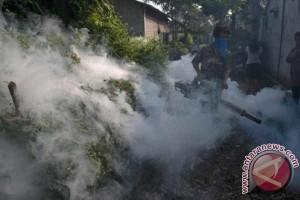 Pencegahan DBD. Seorang petugas melakukan pengasapan untuk pencegahan DBD (Demam Berdarah Dengue).