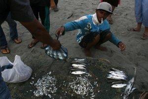 Muhammad Syukur menawarkan ikan hasil tangkapannya setelah pulang melaut selama dua hari