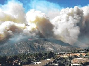 Anggota bomba berusaha mengawal kebakaran hutan di Carlifornia.