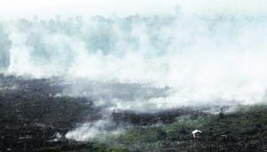 Kepulan asap masih dilihat terbit daripada kawasan terbakar di daerah Pelalawan, di wilayah Riau, Sumatera, kelmarin,