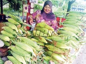 Jagung segar yang dijual Linda di tepi jalan Kampung Pasir Puteh