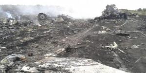 Foto lokasi jatuhnya pesawat Malaysia Airlines MH17 di Ukraina, Kamis (17/7/2014)