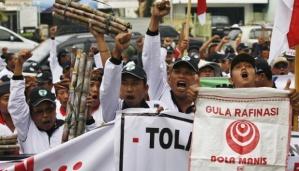 Ratusan petani tebu yang tergabung dalam Asosiasi Petani Tebu Rakyat Indonesia (APTRI) menggelar unjuk rasa di depan kantor Kementerian Perdagangan, Jakarta.   TEMPO/Subekti