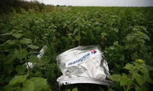 mh17-crash-site3a-debris-from-malaysia-airlines-flight-mh17-on-data article