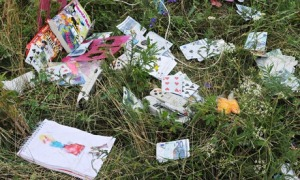 Passengers' belongings at the site of the Malaysia Airlines plane crash in east Ukraine. Photograph: Dominique Faget/AFP