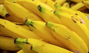 pisang-ilustrasi-_130629112629-206