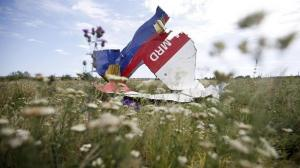A part of the wreckage of Malaysia Airlines Flight MH17 is seen at its crash site, near the village of Hrabove, Donetsk region, July 20, 2014 - -- PHOTO: REUTERS
