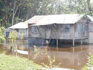 Rumah penduduk di Kampung Permatang Pelanduk ditenggelami banjir yang berpunca daripada limpahan air Sungai Kinta dan ban sungai pecah.